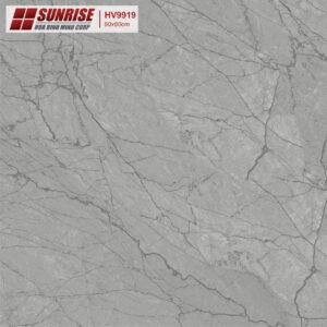 Gạch lát nền Sunrise 60x60 HV9919