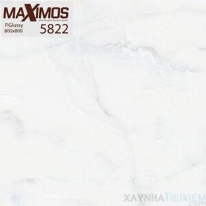 Gạch lát nền UNIS 80x80 5822