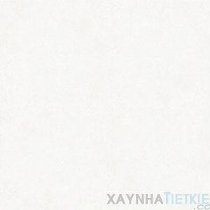 Gạch lát nền Đồng Tâm 60x60 6060VICTORIAC005