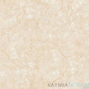 Gạch lát nền Đồng Tâm 80x80 8080FANSIPAN003-FP-H+