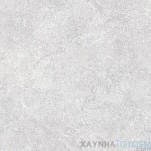 Gạch lát nền Đồng Tâm 80x80 DTD8080Napoleon002-H+