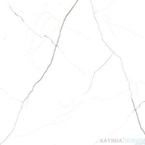 Gạch lát nền Ý Mỹ 60X60 EN69003