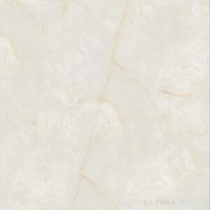 Gạch lát nền Royal-Hoàng Gia 60x60 3D-C69821