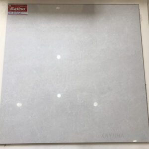Gạch lát nền Tasa 60x60 STN6512