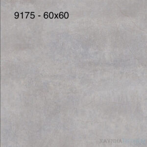 Gạch lát nền Prime 60x60 9175