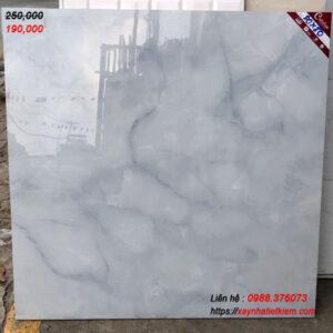 Gạch lát nền Catalan 80x80 8034