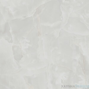 Gạch lát nền Viglacera 60x60 B6002