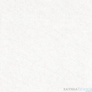 Gạch lát nền Viglacera 60x60 ECO-M601