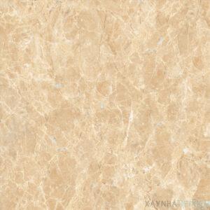 Gạch lát nền Viglacera 60x60 ECO-S603