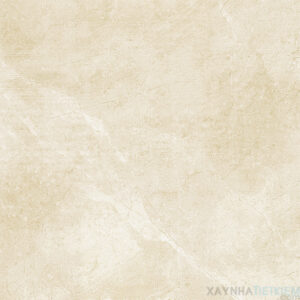 Gạch lát nền Viglacera 60x60 KT601