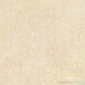 Gạch lát nền Viglacera 60x60 KT605