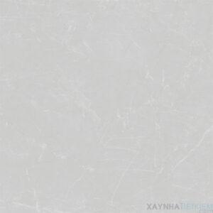 Gạch lát nền Viglacera 60x60 M6005
