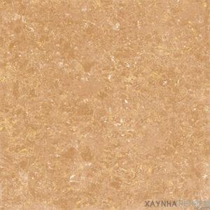 Gạch lát nền Viglacera 60x60 TS1-610