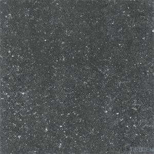 Gạch lát nền Viglacera 60x60 TS1-614