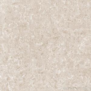 Gạch lát nền Viglacera 60x60 TS2-621