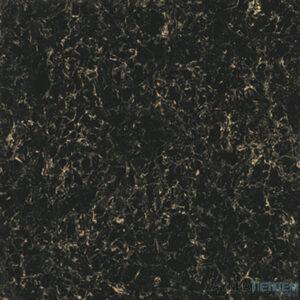 Gạch lát nền Viglacera 60x60 TS2-624