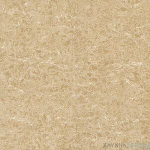 Gạch lát nền Viglacera 60x60 TS2-626