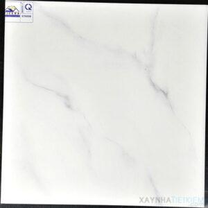 Gạch lát nền Vicera 60X60 KT6008