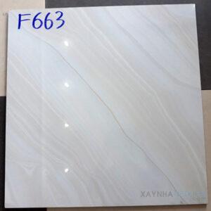 Gạch bóng kính 60x60 F663