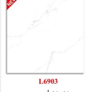Gạch lát nền vân khói 60x60 L6903