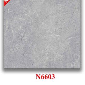 Gạch bóng mờ 60x60 N6603