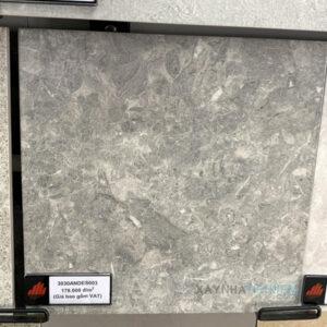 Gạch lát nền 30x30 Đồng Tâm 3030ANDES003