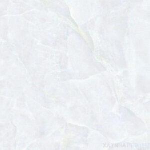 Gạch lát nền 40x40 Đồng Tâm 485