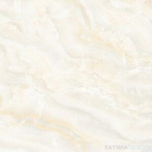 Gạch lát nền Đồng Tâm 6060HAIVAN005-FP