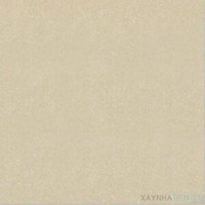 Gạch lát nền Đồng Tâm 80x80 8080DB006-NANO