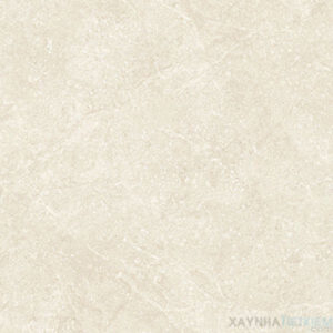 Gạch lát nền Đồng Tâm 8080NAPOLEON001-FP-H+