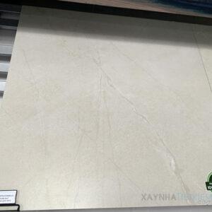 Gạch lát nền Đồng Tâm 8080NAPOLEON009-FP-H+