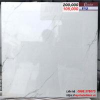 Gạch lát nền bóng kính 60x60 CATALAN 6118