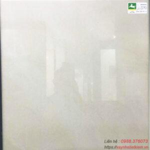 Gạch lát nền 60x60 Bạch Mã HMP60906