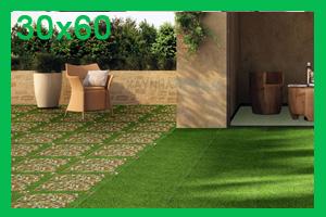 Gạch sân vườn 30x60