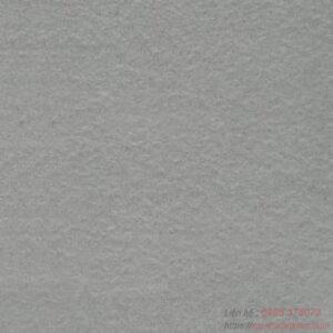Gạch lát nền Taicera 60x60 G68528DD