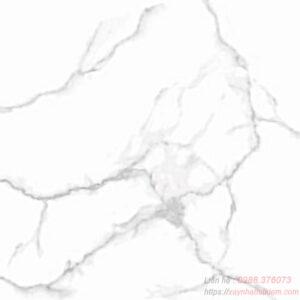 Gạch lát nền Taicera 60x60 G68945