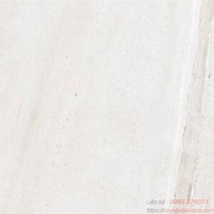 Gạch lát nền Taicera 60x60 GP68065