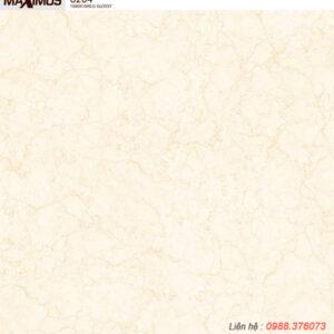 Gạch lát nền Vitto 100x100 6204