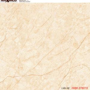Gạch lát nền Vitto 100x100 6205F1