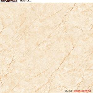 Gạch lát nền Vitto 100x100 6205F2