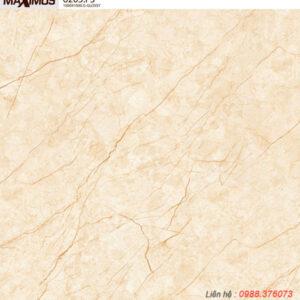 Gạch lát nền Vitto 100x100 6205F3