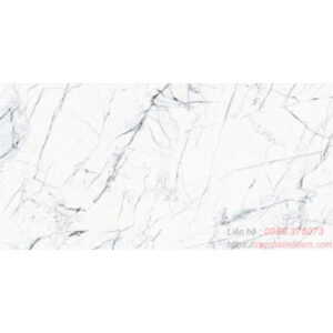 Gạch lát nền bóng kính Taicera 60x120 G12905