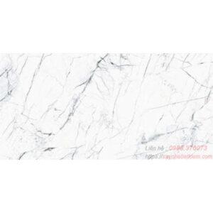 Gạch lát nền bóng kính Taicera 60x120 GP12905