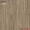 Gạch lát nền vân gỗ AMY 60x60 570