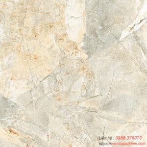 Gạch lát nền Viglacera 50×50 H502
