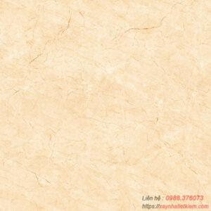 Gạch lát nền Viglacera 50×50 H503